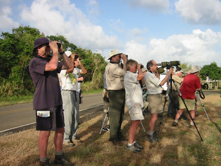 group of birders