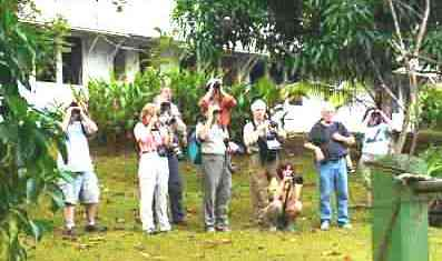 THE PANAMA BIRDING EXPERIENCE 