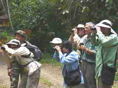 Birdwatchers looking for the Snail Kite at the Caribbean Site north entrance of the Panama Canal Gatun Lake Colon by boat tour, Central birdwatching tours, bird checklists, birdlist, tropical rainforest birds and nature photography tour, expert guides and guiding, bierding hot spots, bird watching birds, birdwatcher going birding, finding birds in panama, bird diversity, zone birding.