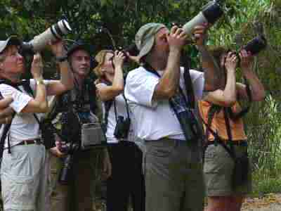 Birders and photographers at work...Birdwatchers looking for the Snail Kite at the Caribbean Site north entrance of the Panama Canal Gatun Lake Colon by boat tour, Central birdwatching tours, bird checklists, birdlist, tropical rainforest birds and nature photography tour, expert guides and guiding, bierding hot spots, bird watching birds, birdwatcher going birding, finding birds in panama, bird diversity, zone birding.